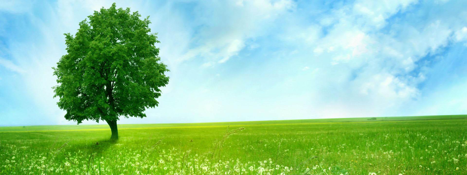 Ecoaria - attenti al risparmio energetico e il mondo in cui viviamo